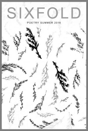 Sixfold Poetry Summer 2016