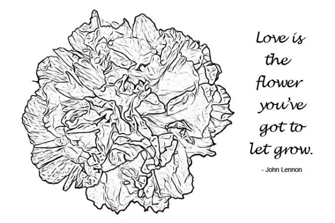 Flower Coloring: An Inspirational Coloring Book for Adults (Colorful Quote Serie